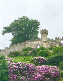 Warwick Castle: A Tour of its Grounds, Gardens and Veteran Trees